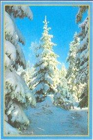 Zodiac Killer Donna Lass Christmas card 2